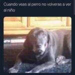 perroniño