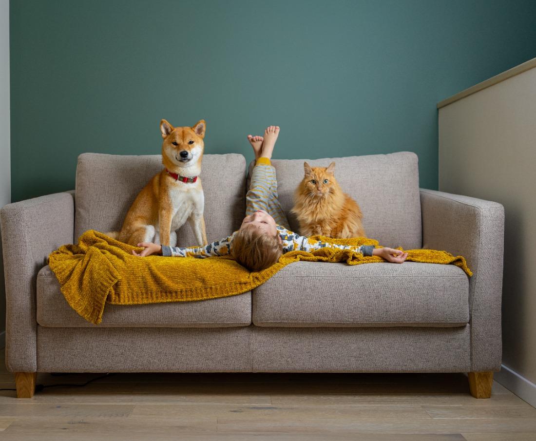 5 Beneficios de convivir con una mascota en casa